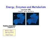 Lecture _6 - Energy, Enzymes and Metabolism