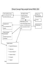 Clinical Concept Map sample format RNSG 1162 revised.doc