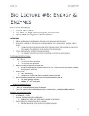 Bio Lecture #6 - Energy & Enzymes.docx