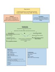 Atrial Fibrillation Concept Map.Concept Map Atrial Fibrillation Docx Risk Factors Atrial