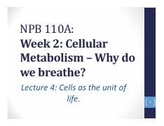 Lecture 4. Cells as units of life.pdf