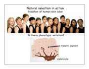 Natural _ Kin Selection Discussion.Handout.2015.1 pp