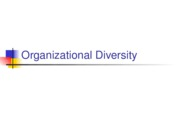 CMN 101 Lecture 10 Organizational Diversity Updated