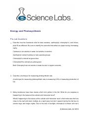 BIO 115Energy and Photosynthesis .pdf