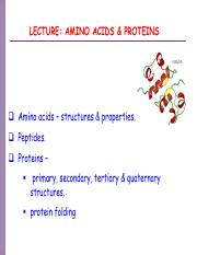 LSM1101-amino acid-proteins 2016.pdf