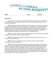 Lights__Camera_Action_Potential.doc