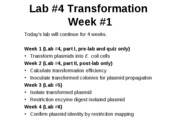 Lab 4 transformation week 1