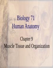 Ch 9 Muscle Tissue.ppt