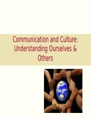 L4+Communication++Culture+class