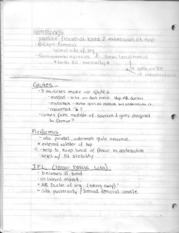 Hamstring, glutes, IT band, Thigh, Quadand FABER test Notes