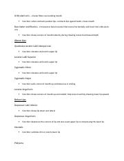 Study Guide for Articulation Muscles Quiz