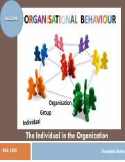 02-OB-02-Individual in the Organisation-PRESENTATION-Job Attitudes Values Perosnality-N.pdf