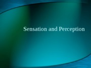 Sensation and Perception Images