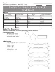 Transcription Translation Practice Worksheet.doc - Name ...