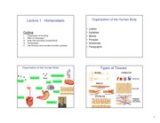 Lecture 01-homeostasis