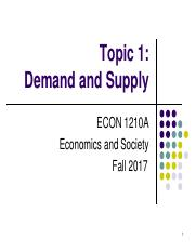 Topic 1. Demand and Supply.pdf