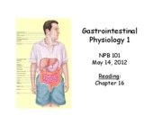 lecture29_Gastrointestinal1_2012_POSTED