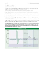 lung_volume_spirometer_activity