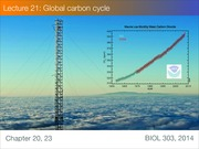 Lecture 20 Global carbon cycle -- student version
