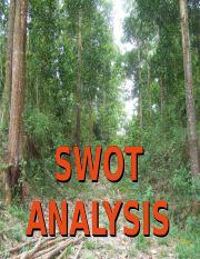 SWOT Analysis Adjusted.ppt