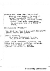 Sociology notes developmental perspective