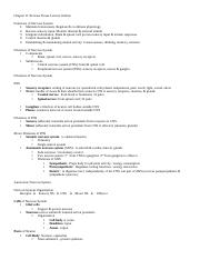 Chapter 11 Nervous Tissue Lecture Outline