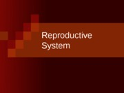 REPRODUCTIVE SYSTEM FINAL