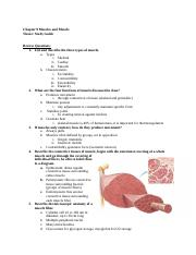 Chapter 9 Muscle and Muscle Tissue Study Guide(1).docx
