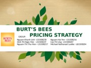 Burt's Bees -Group 7 ver2