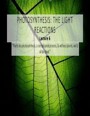 L6 Photosynthesis II - The Carbon Reactions.pdf