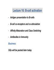 Lecture 15 B cell activation.pdf