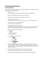 Module 2 Lesson 1 Guided Notes Document.doc