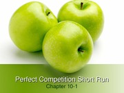Perfect Competition - Short Run