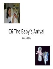 C6+The+Baby's+Arrival.2016_modified