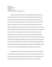 Analytical Essay 1 2013.doc