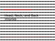 Head,_Neck,_and_Spinal_Injuries_Project
