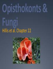 Spring 2016 Lecture 20 Opisthokonts & Fungi 03.16.16.pdf