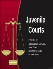 Court history and purpose paper