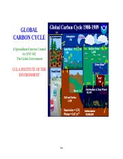 Carbon cycle 2013.xlsx