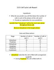 3 01 cell cycle lab report View lab report - 301 cell cycle lab report from biology 10 at coral reef senior high school 301 cell cycle lab report hypothesis: what do you predict you will.