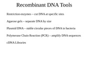 Lecture 17_Recombinant_DNA_Tools.ppt