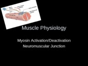 Muscle Physiology1