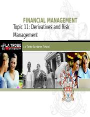 FIN5FMA Lecture 11 (Deriavatives and Risk Management) (1)