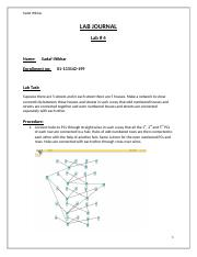 DCN-lab4-journal.docx