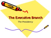 The Executive Branch Presidency(2)