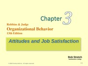 robbins-organization behaviour-chapter 3