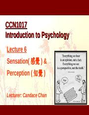 Chapter06 Perception.ppt