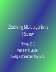 Observing+Microorganisms+Review1.ppt