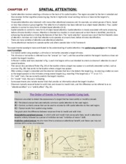 Chapter 7 Textbook Notes (Spatial Attention)
