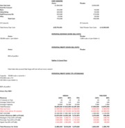 Lady Gaga Case Cost Analysis